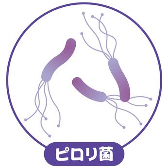 ヘリコバクター・ピロリ菌とは?